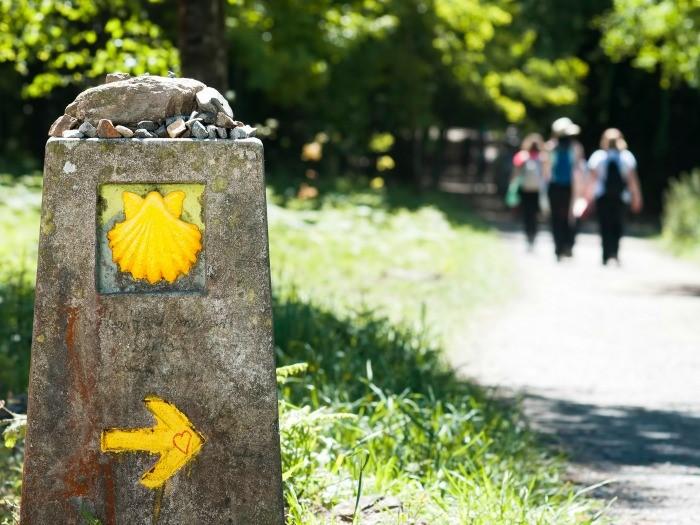 Viajes en grupo al camino de Santiago